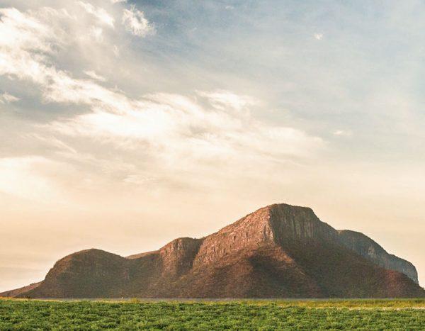 Rancho Nutrilite™ El Petacal