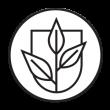 icone-purificacao